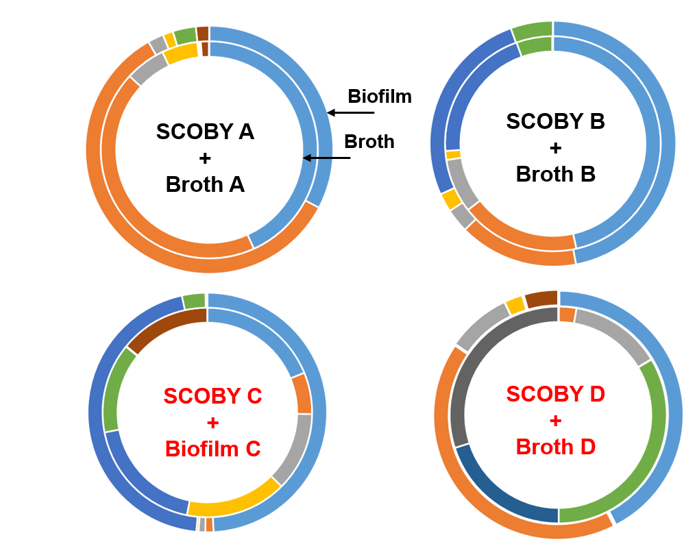 biofilm vs broth comparison of microorganisms composition